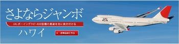 JAL HAWAII.JPG